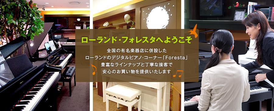 foresta_main