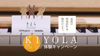 kiyola_taiken_eye